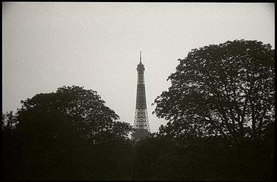 France, Paris, Eiffel Tower - p1654m2280235 by Alexis Bastin