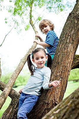 Junge und Mädchen auf Baum - p7670053 von vonwegener.de