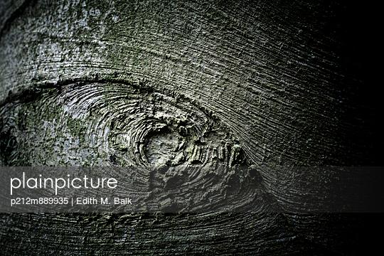 Rinde - p212m889935 von Edith M. Balk