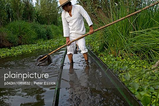 p343m1089832 von Peter Essick photography