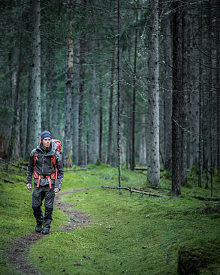 Man hiking through forest - p312m1228878 by Stefan Isaksson