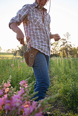 Woman removing scissors from tool belt in snapdragon (antirrhinum) flower farm field - p924m1230201 by Kinzie Riehm