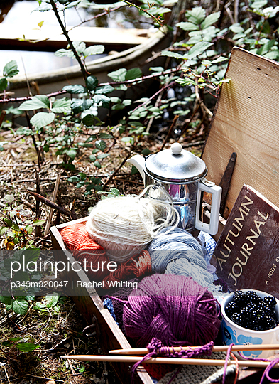 Knitting wool and blackberries with silver coffee pot in vintage suitcase on riverbank;  Isle of Wight;  UK - p349m920047 by Rachel Whiting