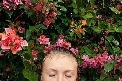 Bougainvillea/Eyes Closed - p1636m2216340 by Raina Anderson