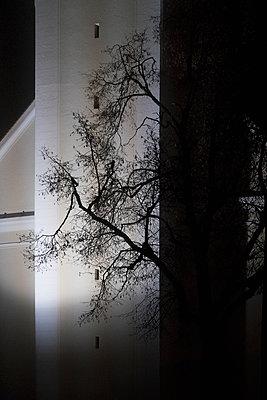 Silhouette - p1149m1193355 by Yvonne Röder