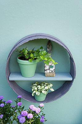 Flower decoration, flour sifter, shelf, brush, flower pots with ivy and aster - p300m2041954 von Gianna Schade