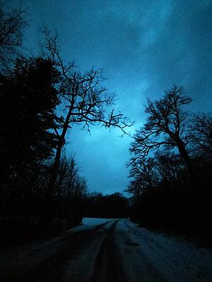 Feldweg im Schnee - p945m2231967 von aurelia frey
