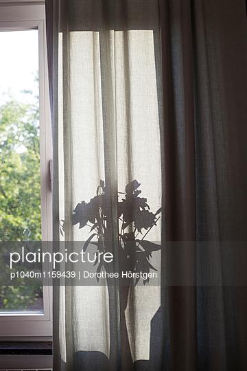 Blume hinter Vorhang - p1040m1159439 von Dorothee Hörstgen