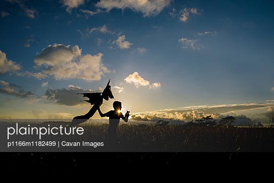 p1166m1182499 von Cavan Images