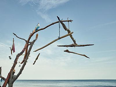 Windspiel aus Treibholz am Strand - p1200m1131614 von Carsten Görling