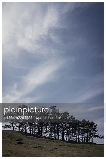 Baumgruppe im Frühling - p1564m2294928 von wpsteinheisser