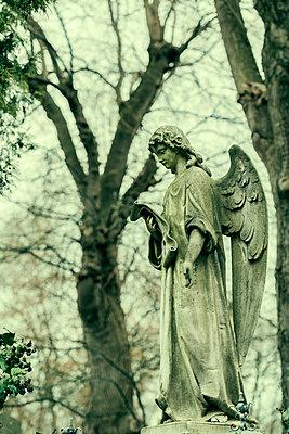 Guardian angel - p081m1143446 by Alexander Keller