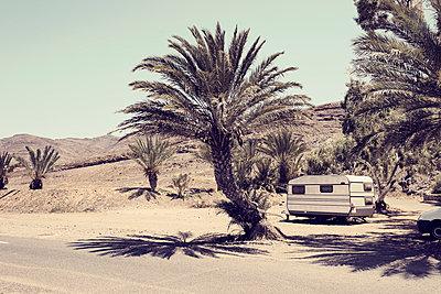Weisser Wohnwagen unter Palmen, Fuerteventura - p1162m952159 von Ralf Wilken