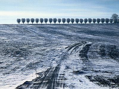 Winter. Svenstorpsvögen - p972m1056388 by Gerry Johansson