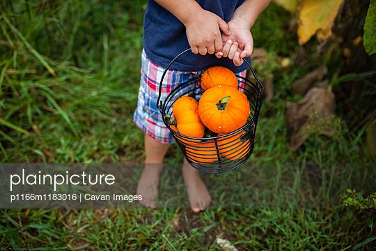 p1166m1183016 von Cavan Images