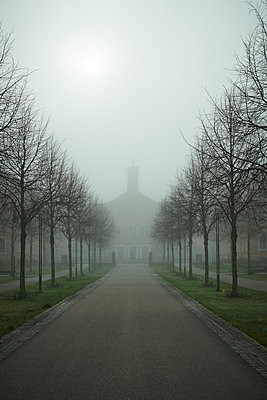 Avenue and building in the fog - p1312m2100883 by Axel Killian