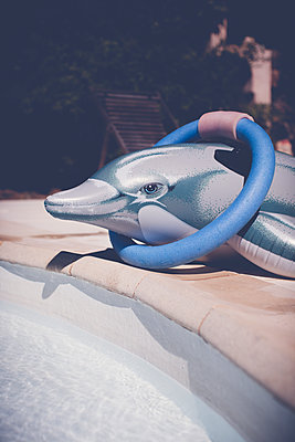 Pool with swimming ring and dolphin - p1598m2164147 by zweiff Florian Bier