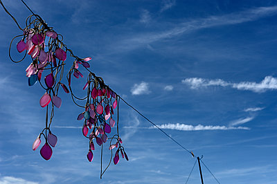 Entangled fairy lights on power line - p491m1119171 by Ernesto Timor