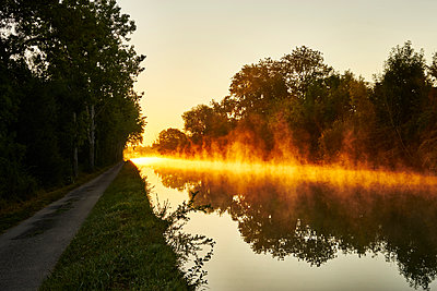 Trees and channel against the light - p1312m2262370 by Axel Killian