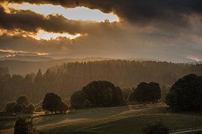 Berglandschaft im Schwarzwald - p1354m1216670 von Kaiser