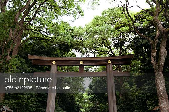 Torii, gate to holy shrine - p756m2122635 by Bénédicte Lassalle