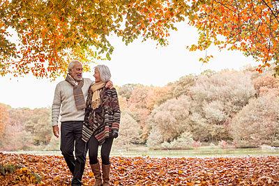 Older couple walking in park - p1023m930866f by Tom Merton