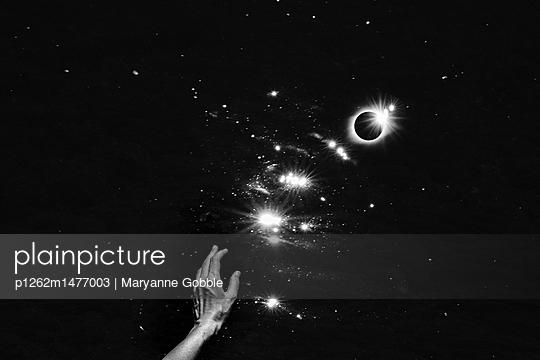 Black Magic - p1262m1477003 by Maryanne Gobble