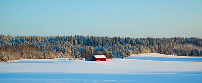 Winter landscape - p4266193f by Tuomas Marttila