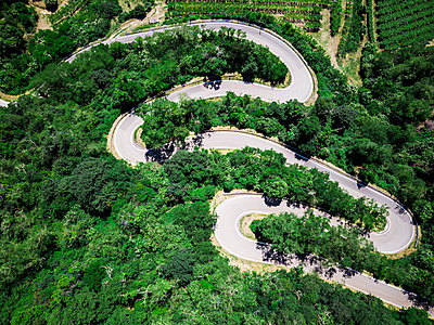 Italy, Veneto, Verona, Aerial view of road winding along forested hill in spring - p300m2198659 by Giorgio Fochesato
