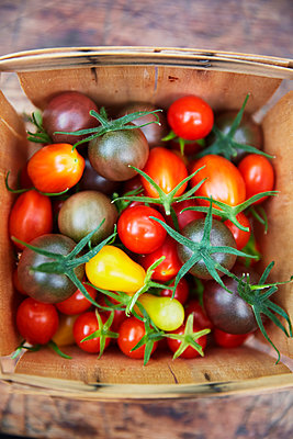 Colorful tomatoes in basket - p312m2091992 by Anna Kern