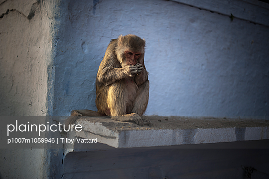 Varanasi - p1007m1059946 by Tilby Vattard