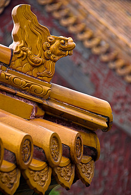 Ornamented traditional Chinese tiled roof. Summer Palace, China. - p3437902 by Guillem Lopez