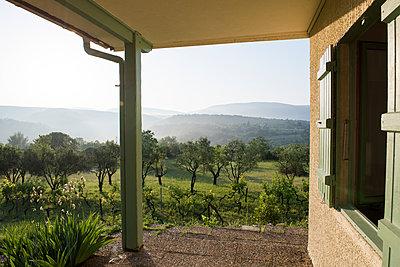 Blick auf Weinstöcke und Olivenbäume - p954m1585907 von Heidi Mayer