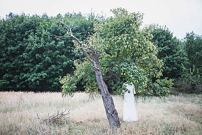 Wedding dress hanging in tree - p300m1204794 by Anke Scheibe
