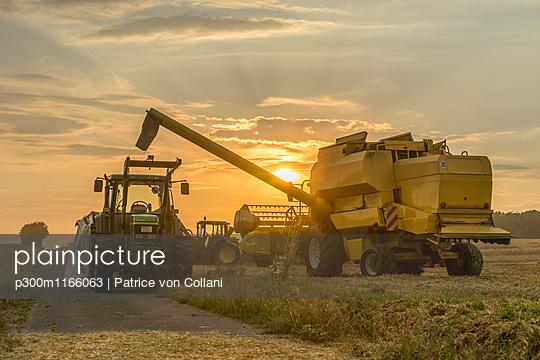 p300m1166063 von Patrice von Collani