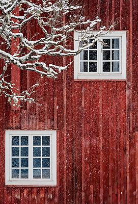Winter - p971m1221071 by Reilika Landen