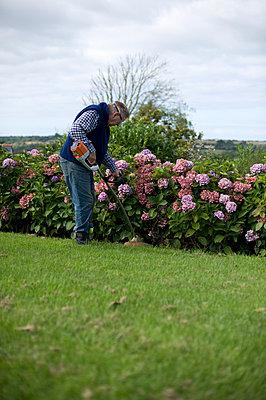 Gartenarbeit - p116m715775 von Gianna Schade
