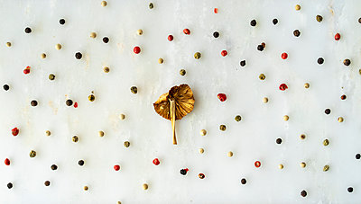 Arrangement of mushroom and peppercorns on white ground - p300m2012337 by VITTA GALLERY