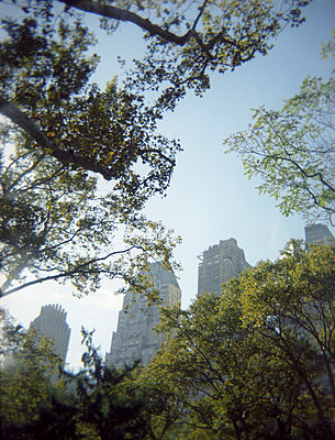Skyscrapers in New York - p3840218 by Sehnaz