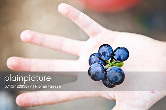 p713m2089877 by Florian Kresse