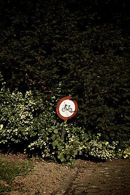 Cycle - p586m1004327 by Kniel Synnatzschke