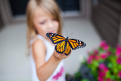 Close-up of girl holding butterfly - p1166m1176236 by Cavan Images