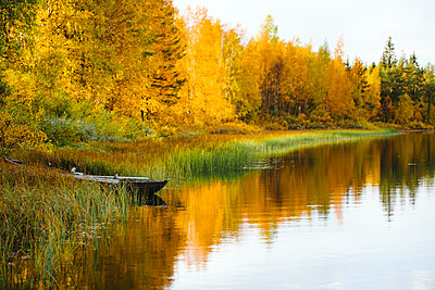 Autumn forest reflecting in lake - p312m2091609 by Matilda Holmqvist