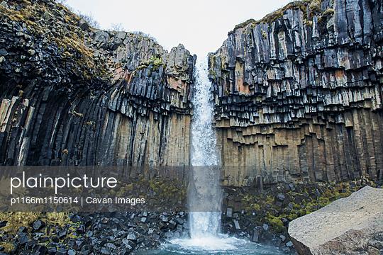 p1166m1150614 von Cavan Images