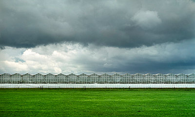 Greenhouse - p1132m1017002 by Mischa Keijser