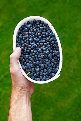 Blueberry - p352m809940f by Mattias Nilsson