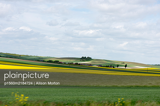 Fields of Rapeseed - p1560m2184724 by Alison Morton