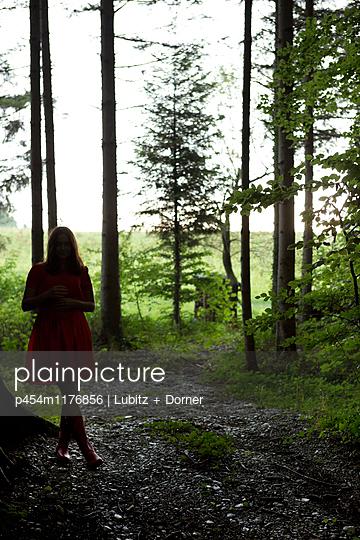 Im Wald - p454m1176856 von Lubitz + Dorner