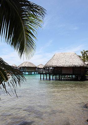 Holiday resort - p0453046 by Jasmin Sander