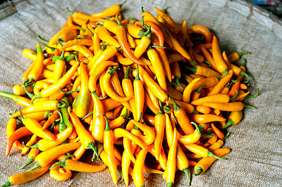 Peppers; close up - p4620636 by BHarman